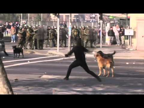 Chile: students clash with police over education