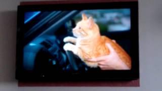 iPad mini видео отправить wi-fi в TV приятно просмотр!(iPad mini видео отправить wi-fi в TV приятно просмотр!, 2013-04-04T16:02:24.000Z)