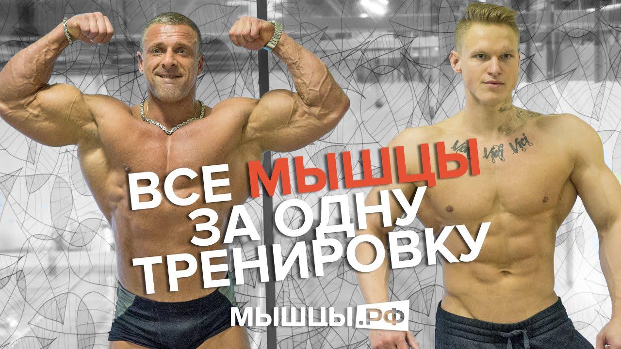Тонизирующая тренировка на все мышцы. Линдовер-Дмитряев