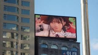 [서폿후기] '프로듀스48' AKB48 치바 에리이(千葉恵里) 생일 축하 전광판.