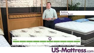 Spring Air Four Seasons Back Supporter Spring Dreams Double Sided Plush Mattress Expert Review