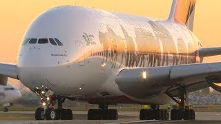 STUNNING Early Morning Aircraft Action | Melbourne Airport Plane Spotting thumbnail