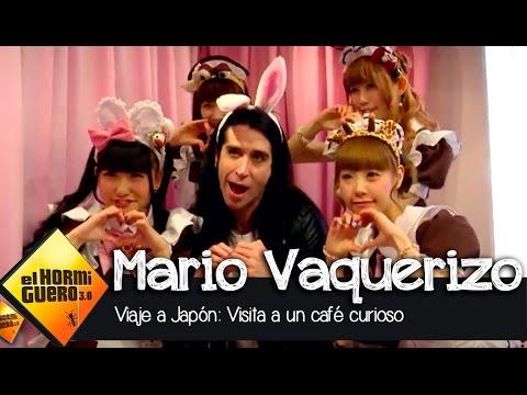 """Mario Vaquerizo: """"No"""