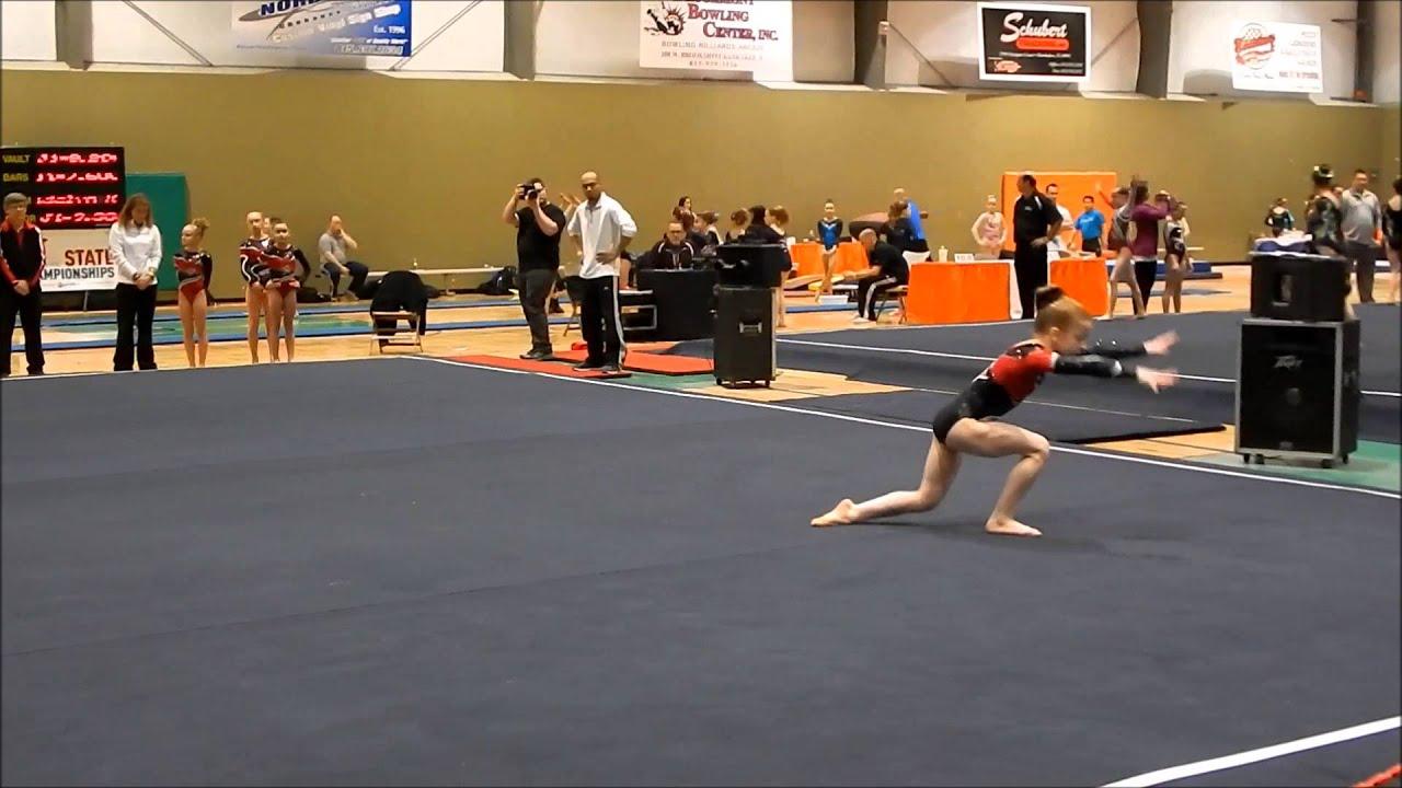 sc gymnastics state meet 2014 level 4