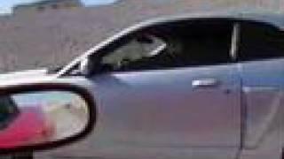 2002 corvette ZO6 Vs COBRA