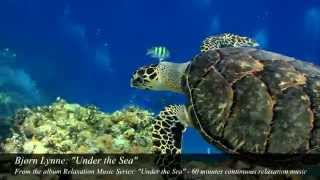 "Bjørn Lynne (as Relaxation Music Series): ""Under the Sea"" - Bjorn Lynne official"