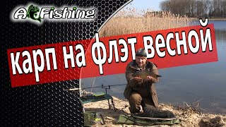 Рыбалка на карпа Простая рыбалка с флэт метод фидер весной