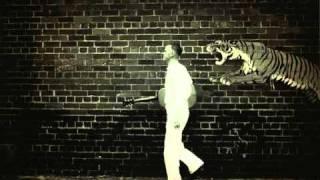 C.W. Stoneking ~ Jungle Blues