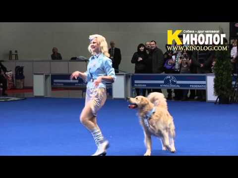 Dance 'Pilots' / Dog Show 'Eurasia  2012 / Russia / Moscow'. Freestyle.
