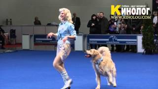"Dance ""pilots"" / Dog Show ""eurasia  2012 / Russia / Moscow"". Freestyle."