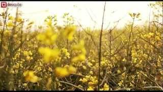 """BEING JATT"" - BALDEEP DHALIWAL feat. N-GRITz OFFICIAL VIDEO 2012 [1943 PRODUCTIONz]"