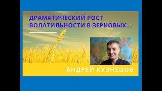 Драматический рост волатильности на зерновых - Андрей Кузнецов