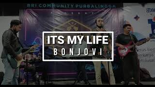Its My Life - cover by BRIKUSTIK