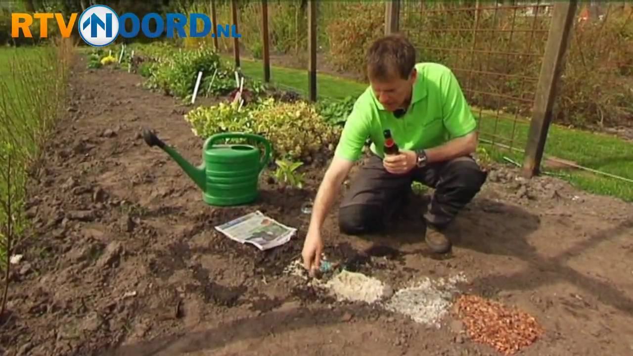 De tuindokter slakken in de tuin youtube - Huis in de tuin ...