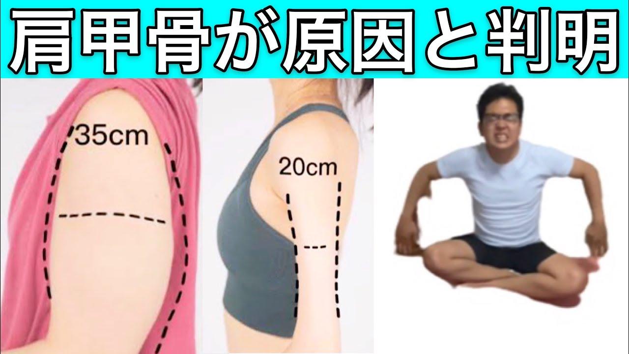 【コレができないとヤバイ!!】お腹周りの腰肉と二の腕痩せるストレッチ方法