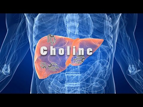 Fatty Liver Disease And Choline