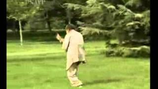Мастер показывает приёмы кунг-фу.(Видео взято с 56com. Узнать о занятиях кунг-фу вПетербурге вы можете на http://www.daode.ru/Forum/, 2011-10-16T03:50:43.000Z)