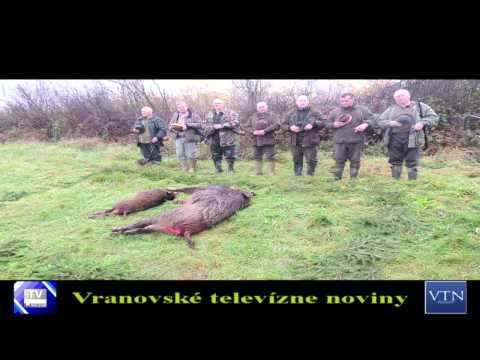 Mesto zorganizovalo spoločnú poľovačku na diviaky