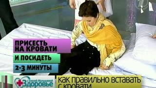 Здоровье (нос, травмы головы, супружеский секс, высокая температура) 2011 11 20