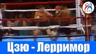 Костя Цзю против Стива Лэрримора. Бокс. Бой №7.