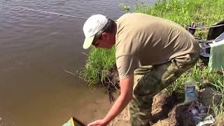 Ловля в проводку на протоках Нижней Волги 2017