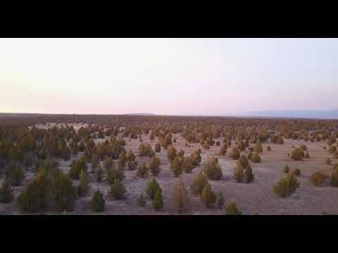 Drone Footage of the 40 Acres Alturas Property Located in Modoc County, CA