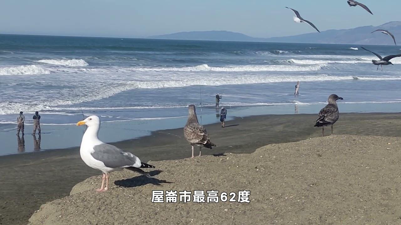【天下新聞】灣區: 濕潤天氣來臨 週末部分地區迎降雨