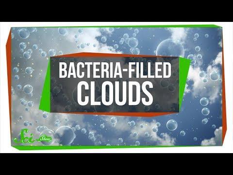 Bioprecipitation: How Bacteria Makes Snow