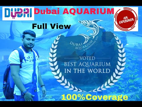 Dubai Aquarium,Full Coverage during Covid-19,#2020 #Dubai Aquarium #VisitDubai #Dubai Mall