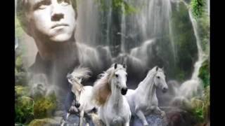 Download ВЛАДИМИР ВЫСОЦКИЙ - БЕГ ИНОХОДЦА Mp3 and Videos