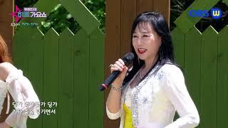 가수 옥현이 딩가딩가    유예진의히트가요쇼  가요TV…