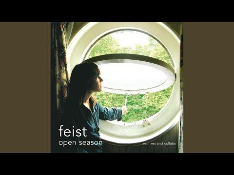 Mushaboom (Postal Service Remix)