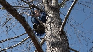 Download 6-Year-Old Boy Who Got Stuck in 50-Foot Tree Says He Will Never Climb Again Mp3 and Videos