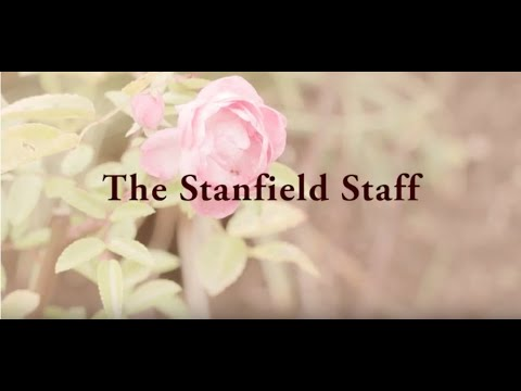 The Staff At Stanfield Nursing Home - Care Homes Worcester