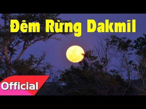 Đêm Rừng Dakmil - Sáng tác: Nguyễn Đức Trung [Lyrics MV HD]