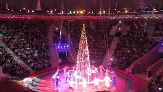 Новогоднее представление в цирке 2017