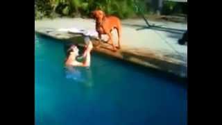 شاب اراد اختبار وفاء كلبه ... (سبحان الله)