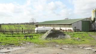 Filière volaille Biocoop, épisode 2 : Les aliments Mercier