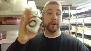 Watering & Lighting for Microgreens