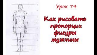 Пропорции фигуры мужчины. Урок 74