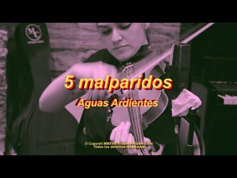 5 Malparidos  – Aguas Ardientes (Live Session) – RAFO.rocks