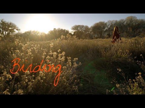 Birding ~ Wander List