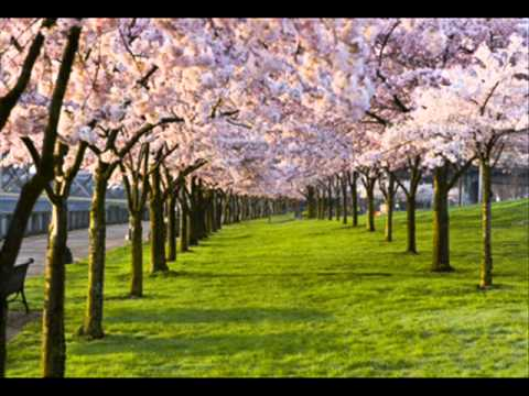 Spring Antonio Vivaldi - YouTube - photo of spring