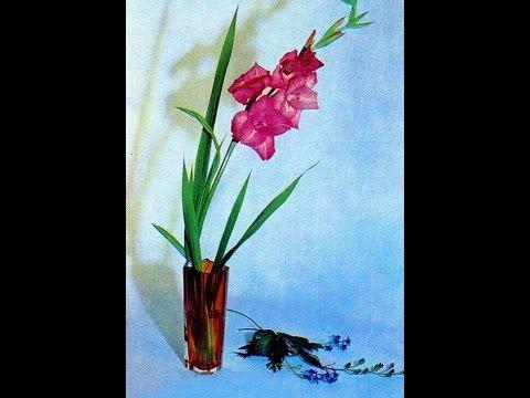 #947. Натюрморты - очень красивые цветы