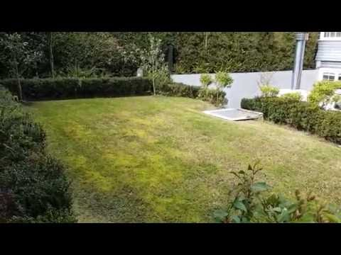 How to treat a lawn that is heavy with moss