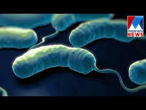 Cholera symptoms identified In Palakkad | Manorama News