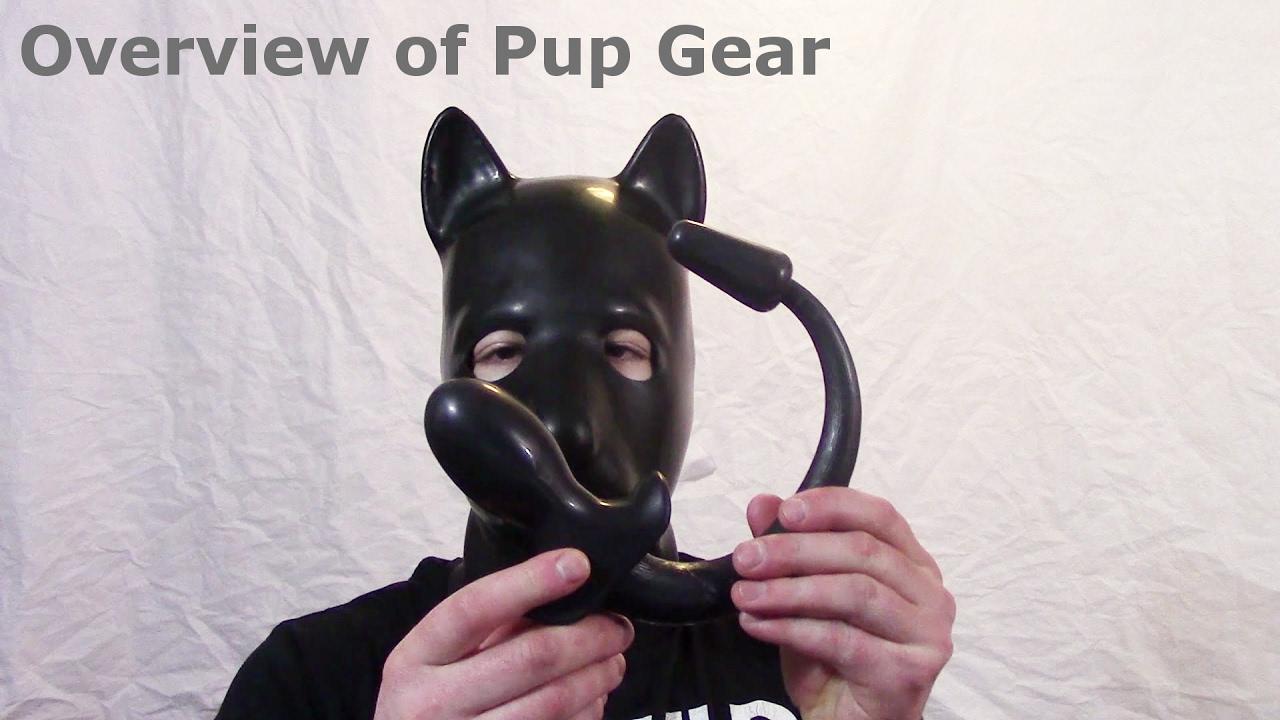 Bdsm puppy play gear