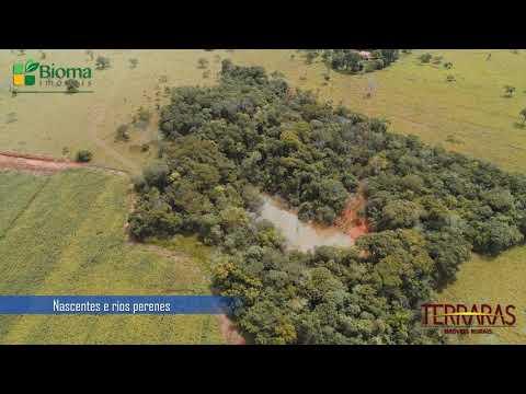 EXCELENTE OPORTUNIDADE! | FAZENDA SANTA LUZIA | BIOMA IMÓVEIS