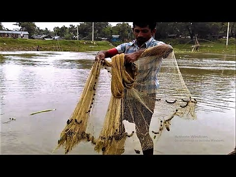 Bangladeshi net fishing at titash river amazing man for Fish catching net