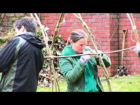 Playbusters - Grow Green with Glasgow's East End